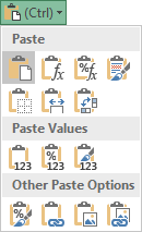 Paste options in Excel.