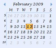 Custom Date Navigator
