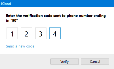Option 1: Two-Step Verification via a text message on your phone (SMS).